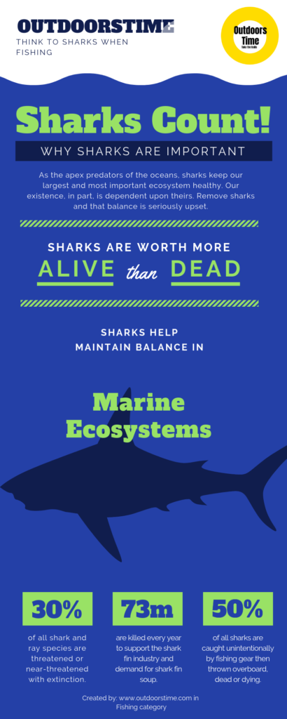 Infographic - Think about Sharks count