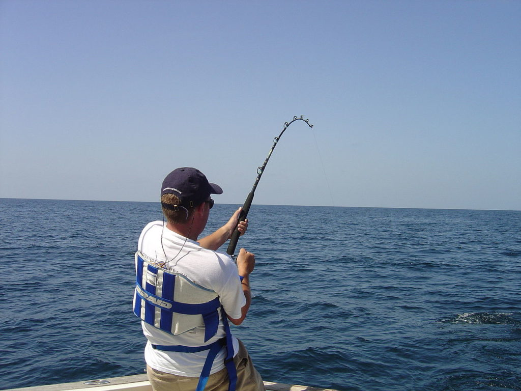 Spinning Rod Action