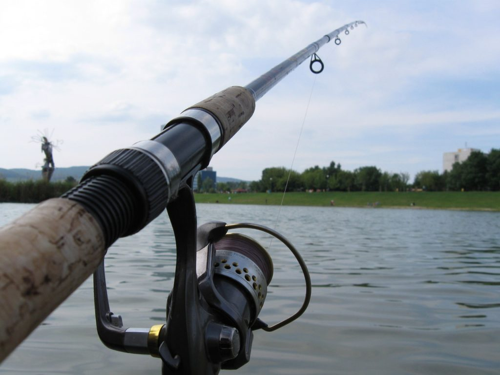 Spinning Rods Weight