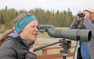 Spotting Scope vs Binoculars - Photography
