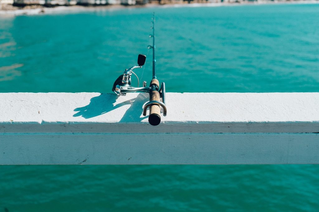 Best Saltwater Fishing Reel and Rod